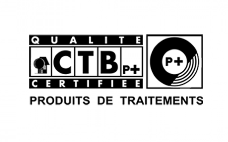 Logo CTB p+