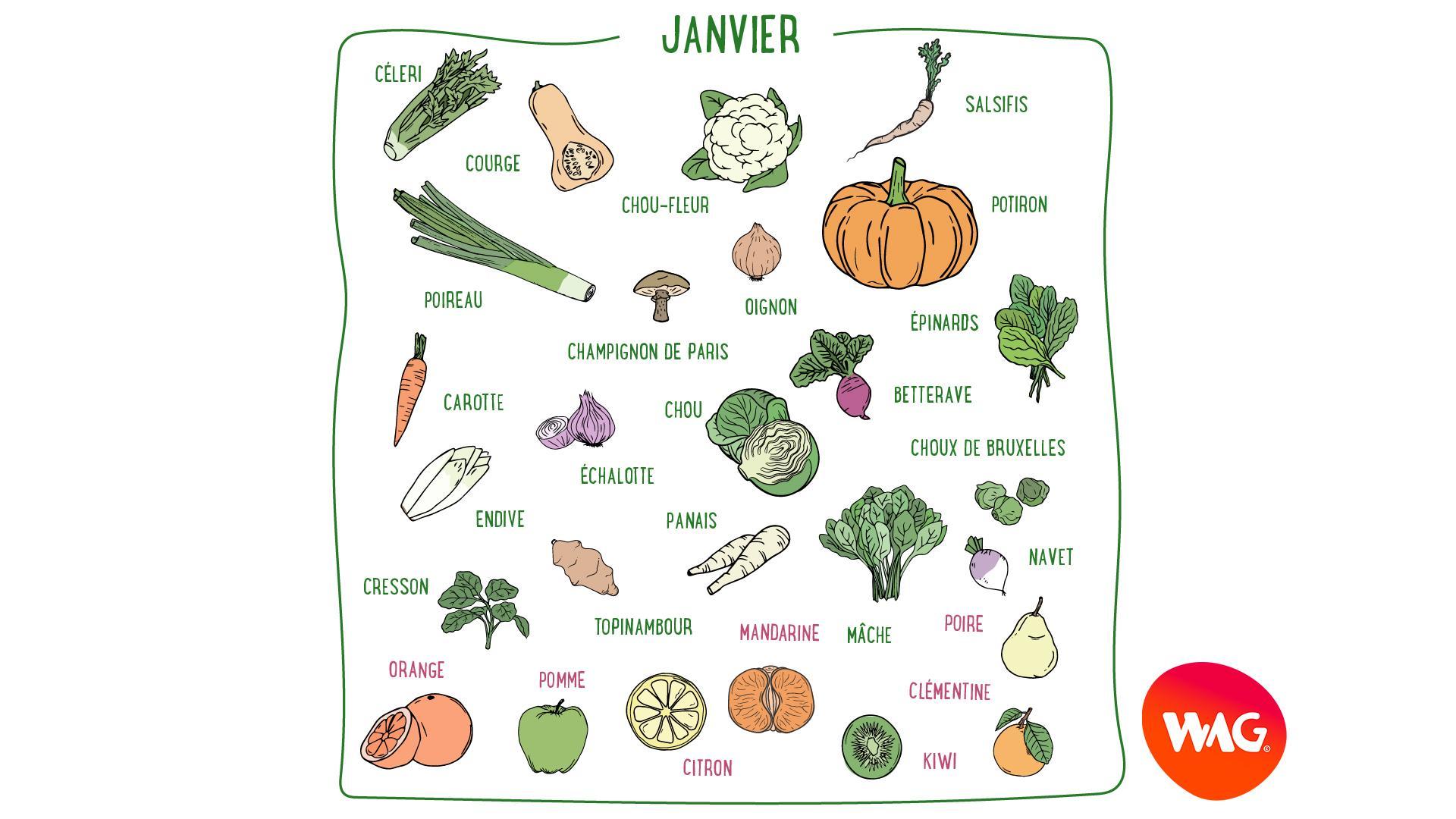 Céleri, citron, chou-fleur, mâche, mandarine, clémentine, poire, orange... Découvrez les fruits et légumes de saison du mois de janvier en France métropolitaine.